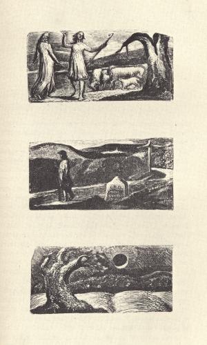 """Life of William Blake, """"Pictor Ignotus"""", vol  1"""