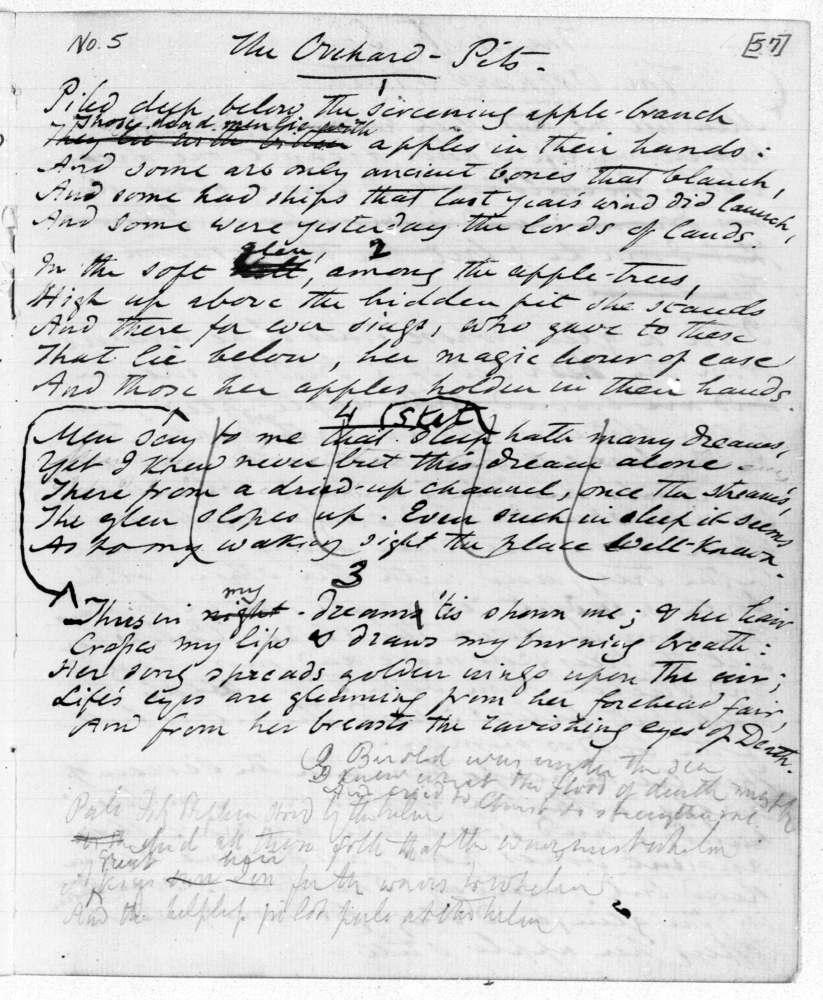 Notebook Pages (Note Book IV, Duke Library)