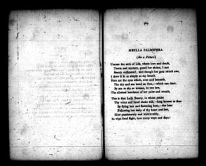 image of page [163 verso]