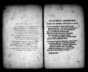 image of page [176 verso]