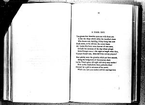 image of page [98 verso]