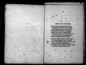 image of page [175 verso]