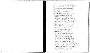 image of page [2v]