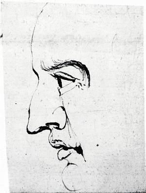 Profile of Man's Face