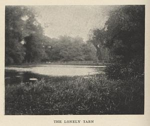 The Lonely Tarn