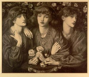 Rosa Triplex [print]