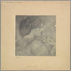 The Roseleaf [print]