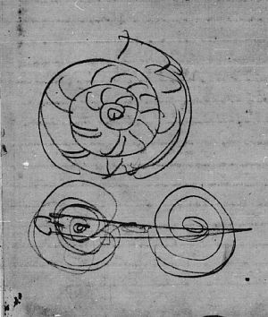 Design for Spiral Brooch